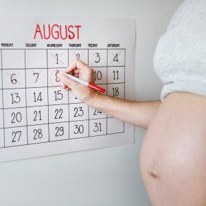 grávida de gemeos obstetra