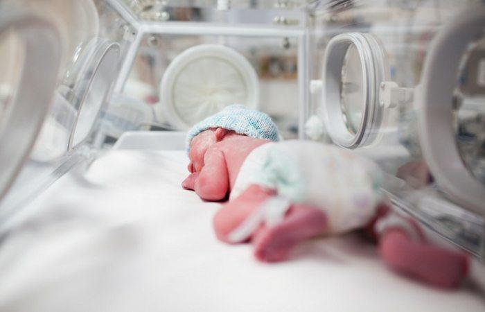 prematuridade twins uti gemeos